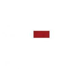 Gloss Voluminizador SPF15 Rojo PC03